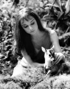 Audrey, with her fawn Pippin