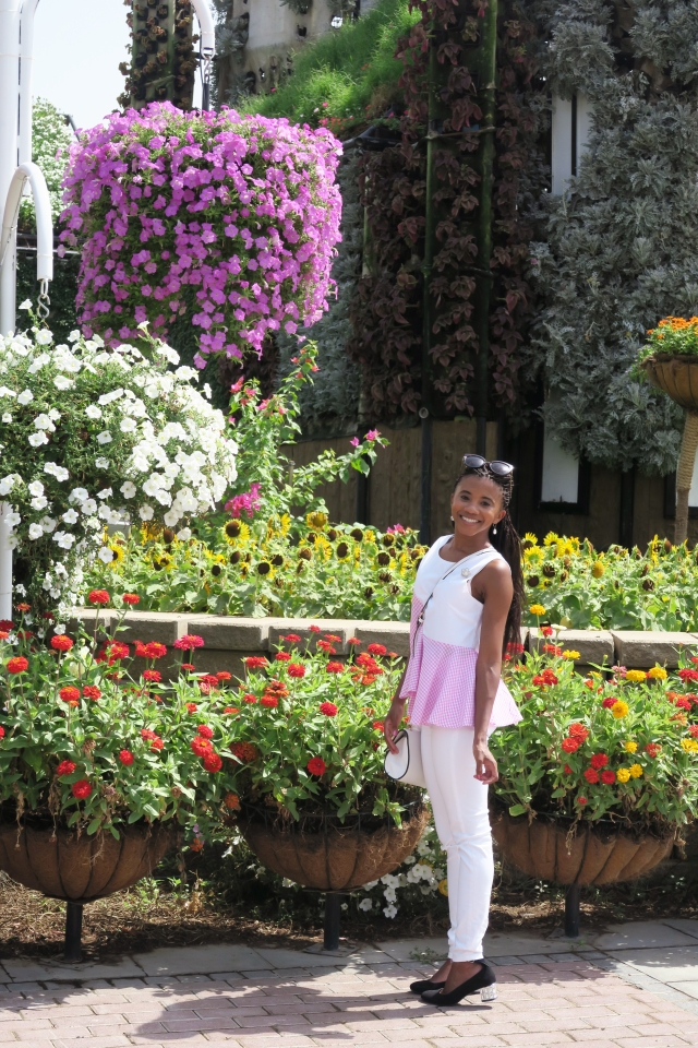 Visiting Miracle Garden 2